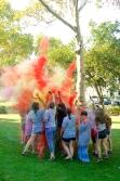 Pitt Arts Color Toss